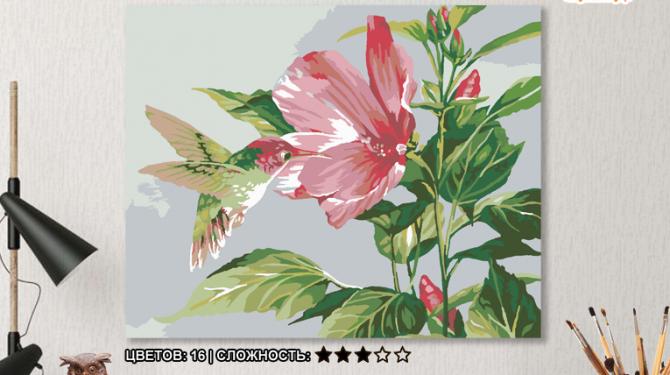 Картина по номерам на холсте 50х40 см.  «Гибискус и колибри» 0