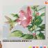 Картина по номерам на холсте 50х40 см.  «Гибискус и колибри» 0 Preview