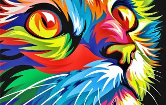 Картина по номерам на холсте 50х40 см. «Радужный кот»