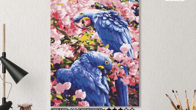Картина по номерам на холсте 50х40 см. «Синие Попугаи» 0