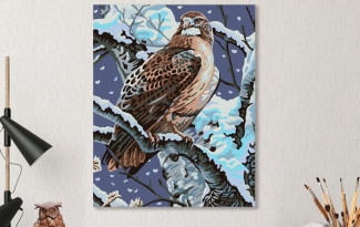 Картина по номерам на холсте 50х40 см.»Гордый орел»