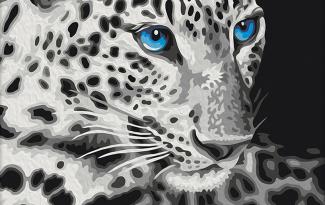 Картина по номерам на холсте 50х40 см. «леопард»