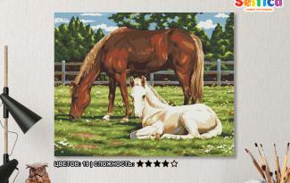 Картина по номерам на холсте 50х40 см. «Лошади»