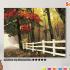 Картина по номерам на холсте 50х40 см. «Осенний лес» 0 Preview