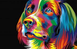 Картина по номерам на холсте 50х40 см. «Радужная собака»