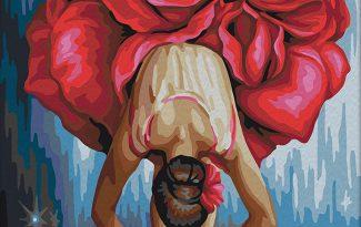 Картина по номерам на холсте 50х40 см. «Танцовщица»