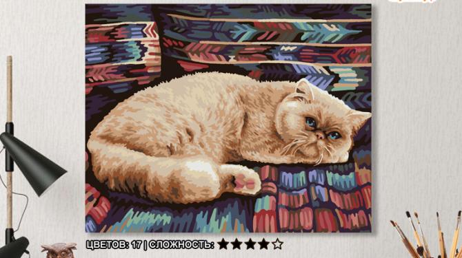 Картина по номерам на холсте 50х40 см. «Персидский кот» 0