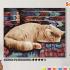 Картина по номерам на холсте 50х40 см. «Персидский кот» 0 Preview