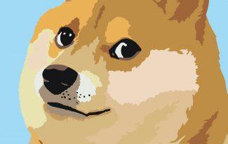 Картины по номерам на холсте 20х15см «Собака-подозревака».