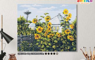 Картина по номерам на холсте 50х40 см. «Подсолнухи у плетня»