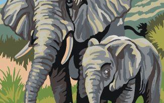 Картина по номерам на холсте 50х40 см. «Слоны»
