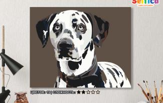 Картина по номерам на холсте 50х40 см. «Далматин». TM Selfica