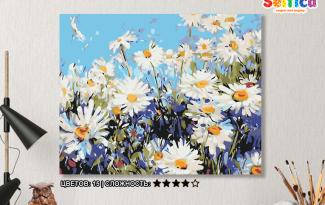 Картина по номерам на холсте 50х40 см. «Поле ромашек». TM Selfica