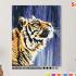 Картина по номерам на холсте 50х40 см. «Тигр под дождём». TM Selfica 0 Preview