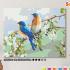 Картина по номерам на холсте 50х40 см. «Весенние птахи». TM Selfica 0 Preview