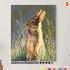 Картина по номерам на холсте 50х40 см. «Заяц». TM Selfica 0 Preview