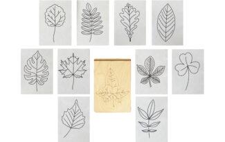 Многоразовая раскраска «Листья деревьев»