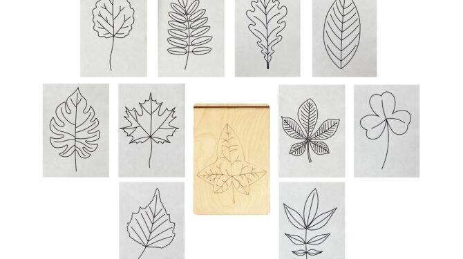 Многоразовая раскраска «Листья деревьев» 2