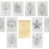 Многоразовая раскраска «Листья деревьев» 2 Preview