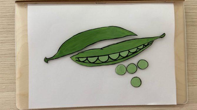Многоразовая раскраска «Овощи» | Polly — деревянные чудо ...